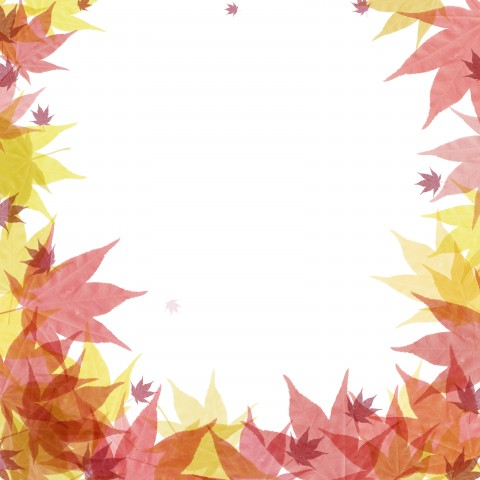 Palm Maple leaves background for poster